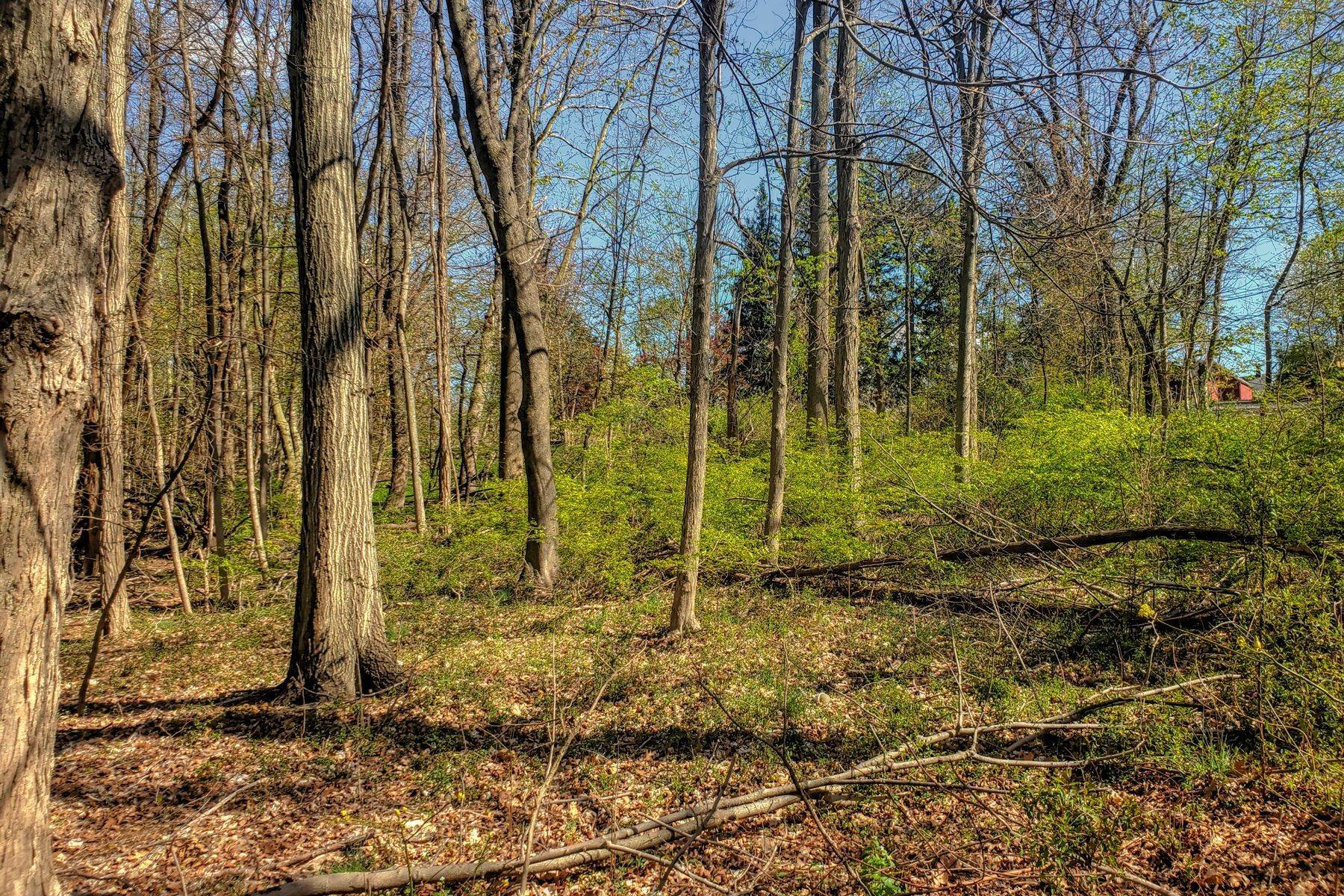 Land for Sale at Build Your Dream Home 26 Hickory Tavern Road Long Hill Township, New Jersey 07933 United States