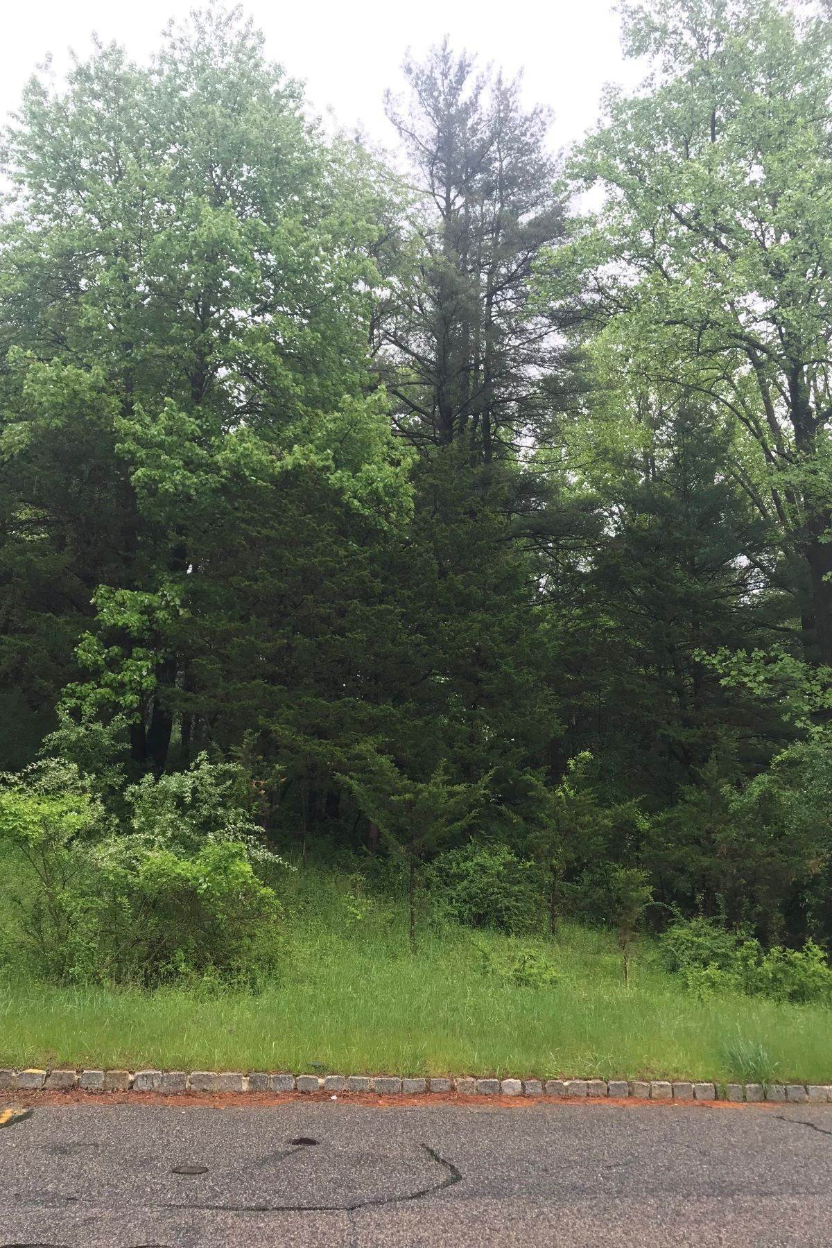 Land for Sale at Beautiful Lot 14 Sheephill Drive Gladstone, New Jersey 07934 United States